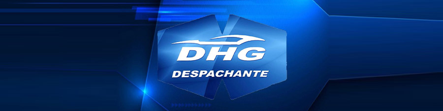 logo dhg despachante